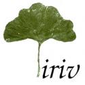 les rives de l'Iriv